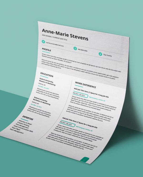 Subtle Cyan Modern Double Page Cv Resume