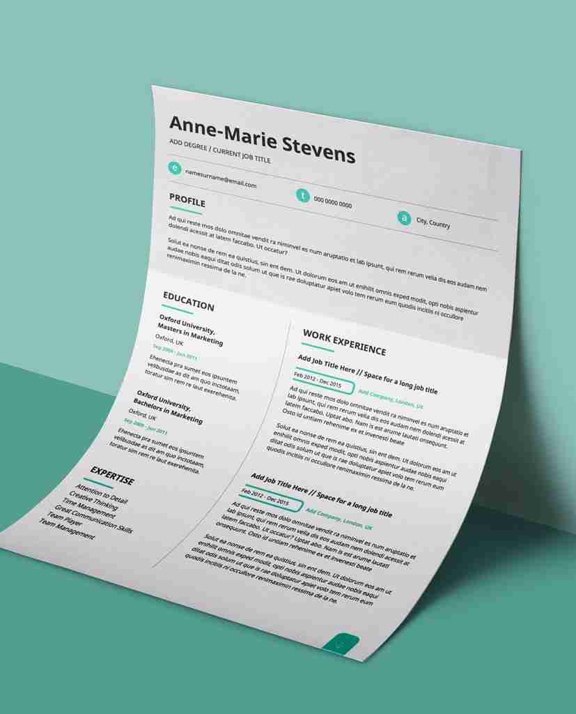 Subtle Cyan - Modern Double Page CV Resume